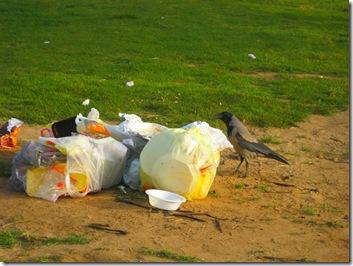 טיול בוקר בפארק 02-04-2010 040