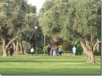 טיול בוקר בפארק 02-04-2010 077