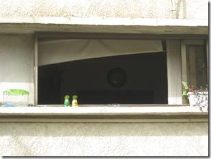 בוקרשבת בגבעת גאולה03-04-2010 001 (23)