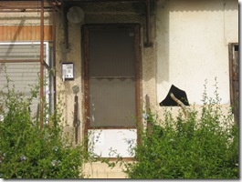 בוקרשבת בגבעת גאולה03-04-2010 001 (3)