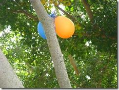 בוקר נסיונות בצילום 04-04-2010 236