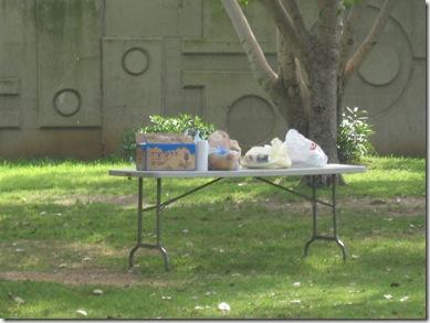 בוקר  05-04-2010 043