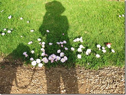 צללית אני ונונה עם פרחים (6)
