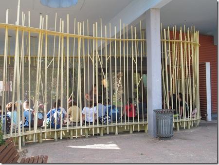 ילדים בכלוב