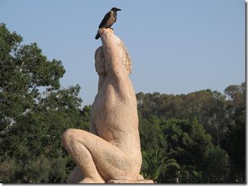 עורב על פסל