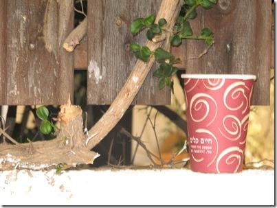 כוס קפה מניר