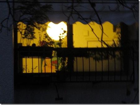 הצצה לחלונות בלילה (6)