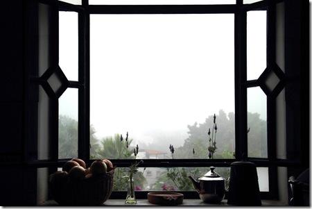 _MG_0016 חלון המטבח שלי בערפל