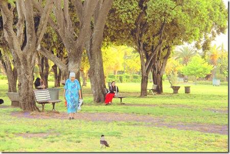 _MG_0018 שתי נשים על ספסלים ועורב בפארק מצויר-2
